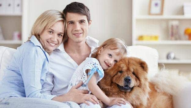 Wills & Trusts dog-young-family Direct Wills Nottingham